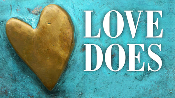 Love Does Not Love the World Image